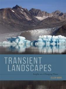 transient landscape