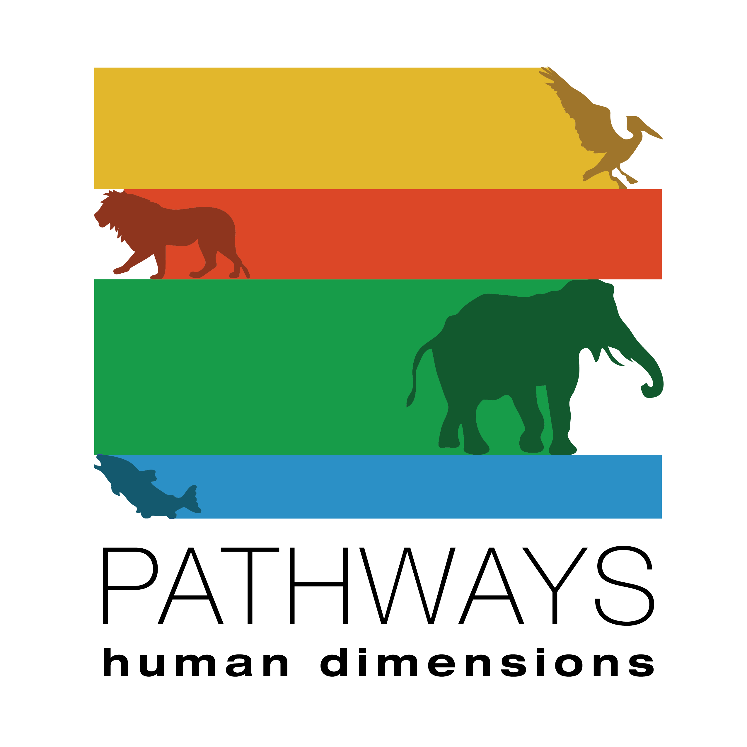 Pathways Africa 2020 - Pathways: Human Dimensions of