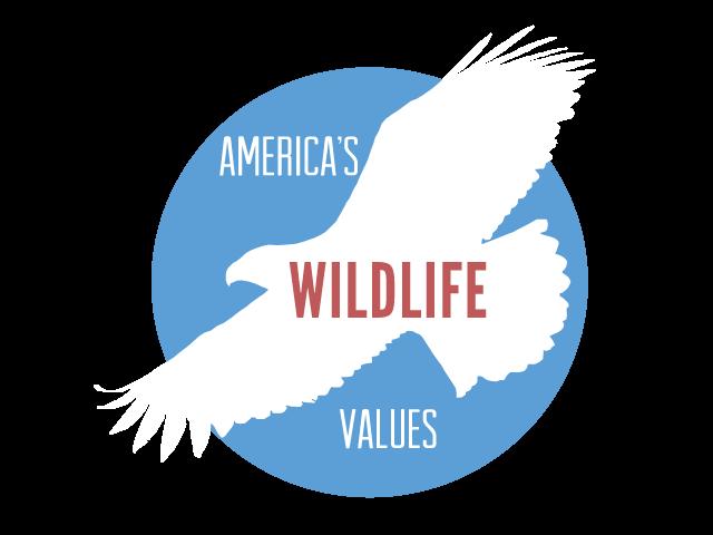 America's Wildlife Values