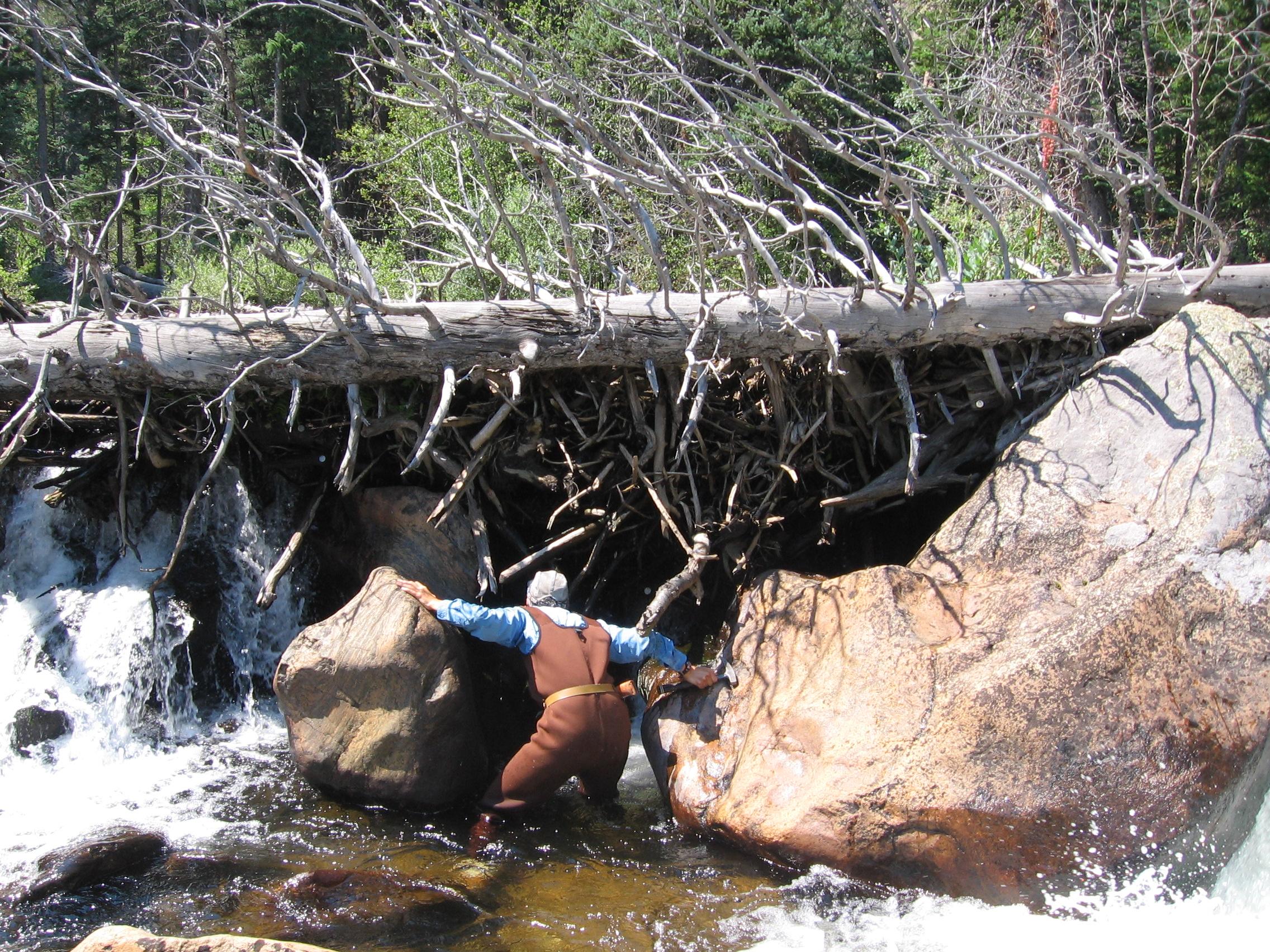 downstream under jam 2